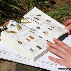 Citizen Science Projects – How you can getinvolved!