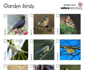 Check list with common garden birds listed via Woodland Trust