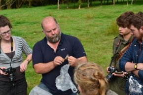 Devon Adventures – British Mammal Workshop