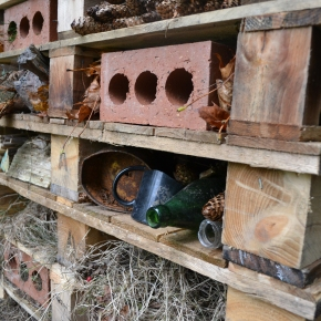 Mindful Monday #14. How to Build a Bug Hotel!