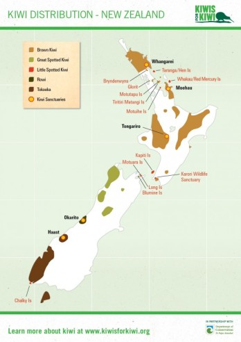 Distribution-New-Zealand1-565x800
